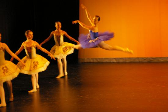 SPECTACLE-2011